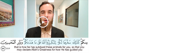 Dhul Hijjah Day 8 | Did you say yum?